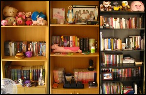 My bookshelves (click to enlarge)